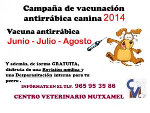 Campaña de vacunación antirábica