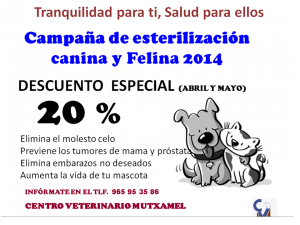 campaña activa de esterilizacion - aumenta la vida de tu mascota
